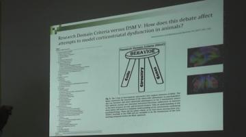 Farmacología (Bca.) 2019. 31 de Octubre.