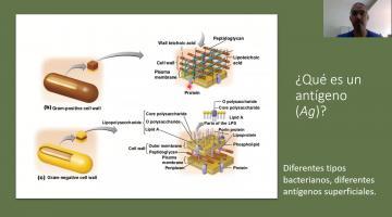 Inmunologia Clase teorica 3 parte 1