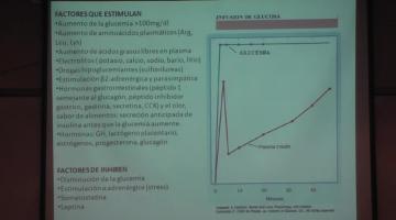 Fisiología 2020. Metabolismo Intermedio II.